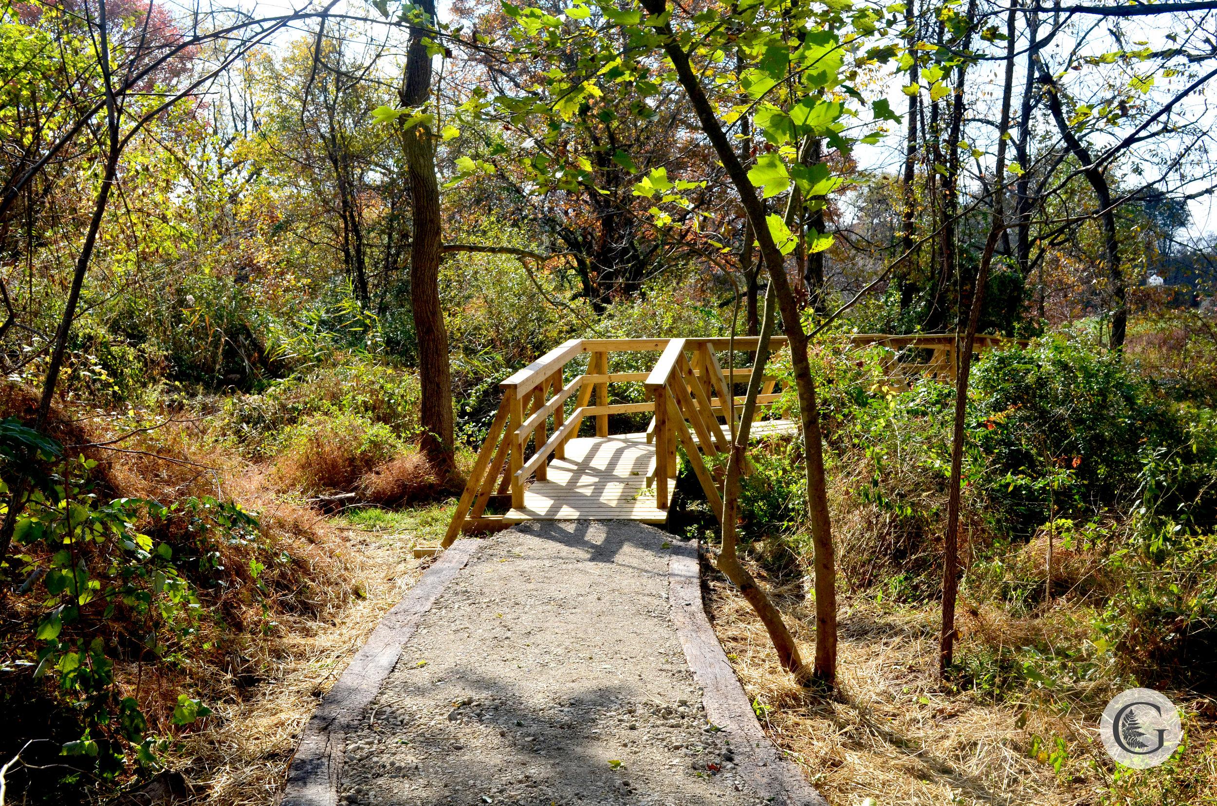 trail-3.jpg