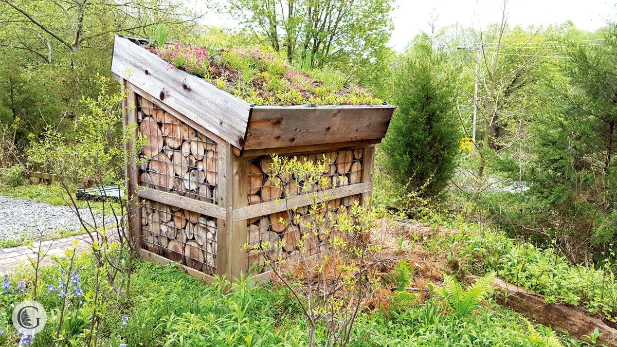 wood-shed-2-1200x675.jpg