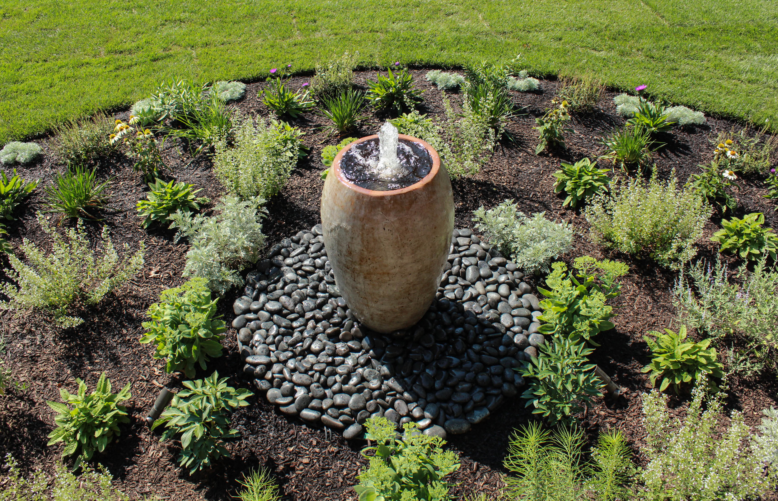Bubbling Fountain and Plants