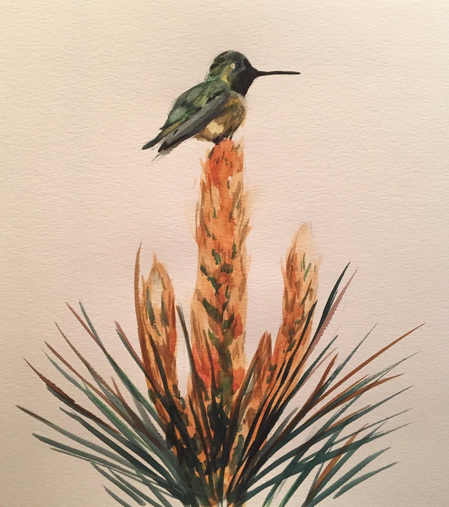 Yucca Perch