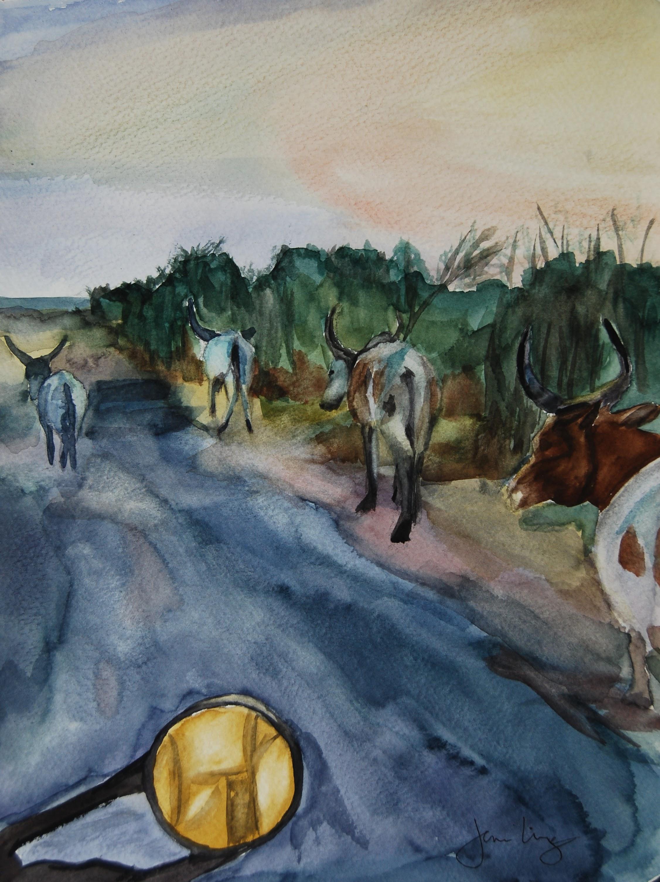 Sudanese Cattle