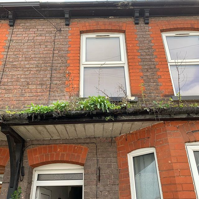 Is there a garden growing in your gutter? Possibly the worst gutters we've ever we had to clear. Our little #skyvacatom made light work of it and the gutters are now all clear 😌 #guttercleaning #windowcleaning #maccleaning #luton