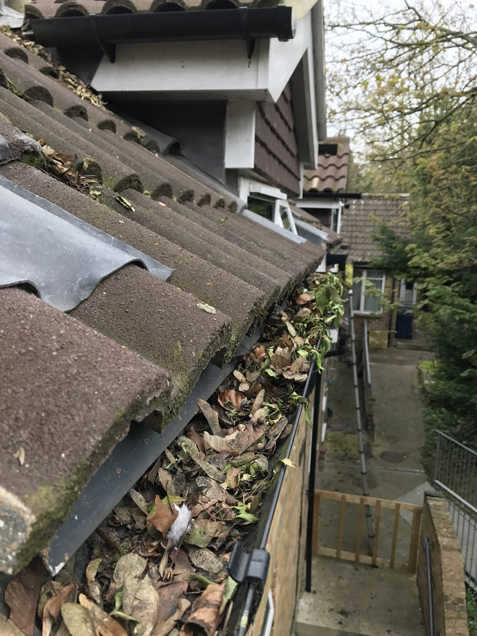 gutter clearing - Using a specialist machine for clearing the dirt from the gutters safely from the ground we are able to remove moss, dirt, plants, tennis balls, kids toys and much more from your gutters.