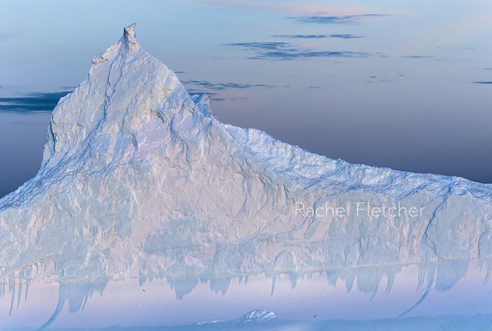 rachel lee fletcher knoxville tn iceberg
