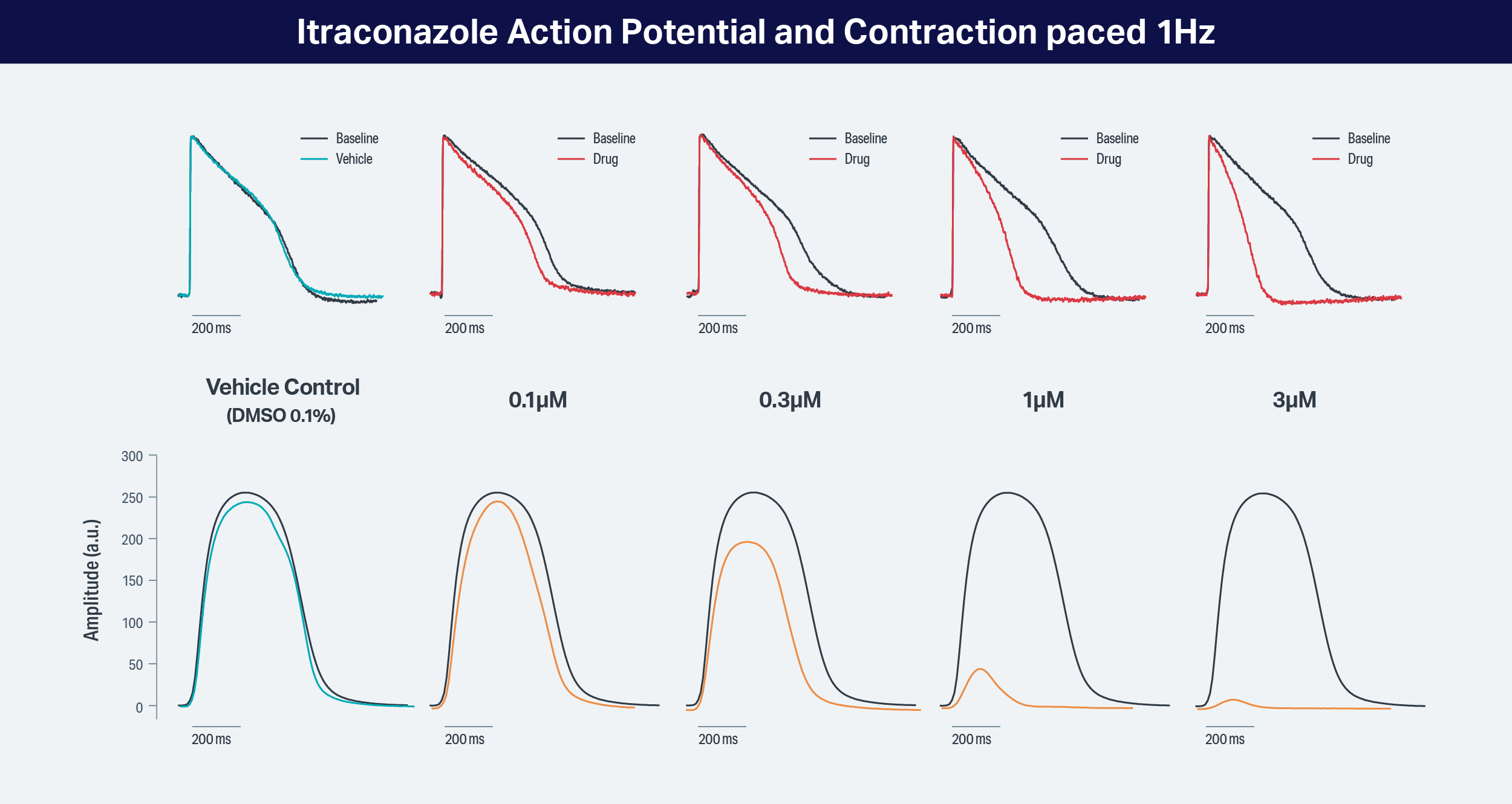 Typical contractility data – Intraconazole. From Clyde Biosceinces
