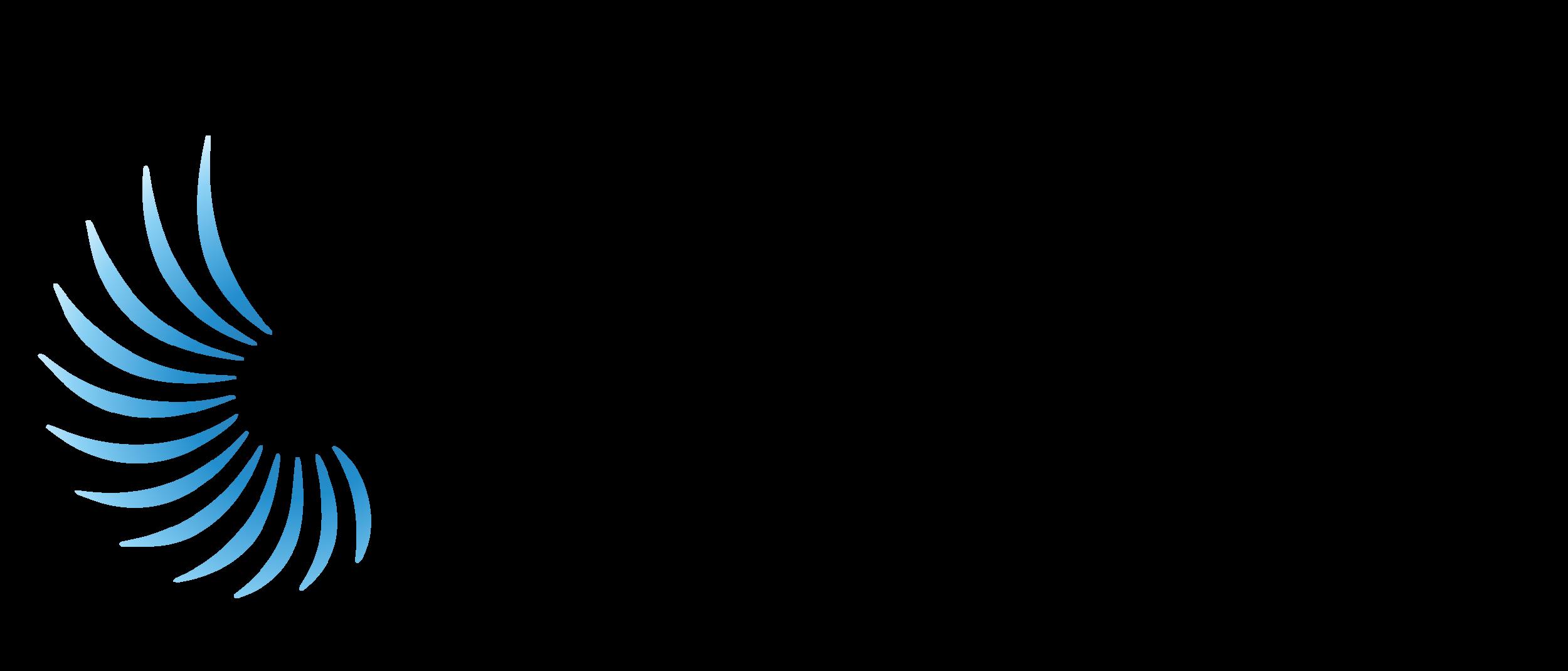 APP_vector_logo_rgb_blk.png