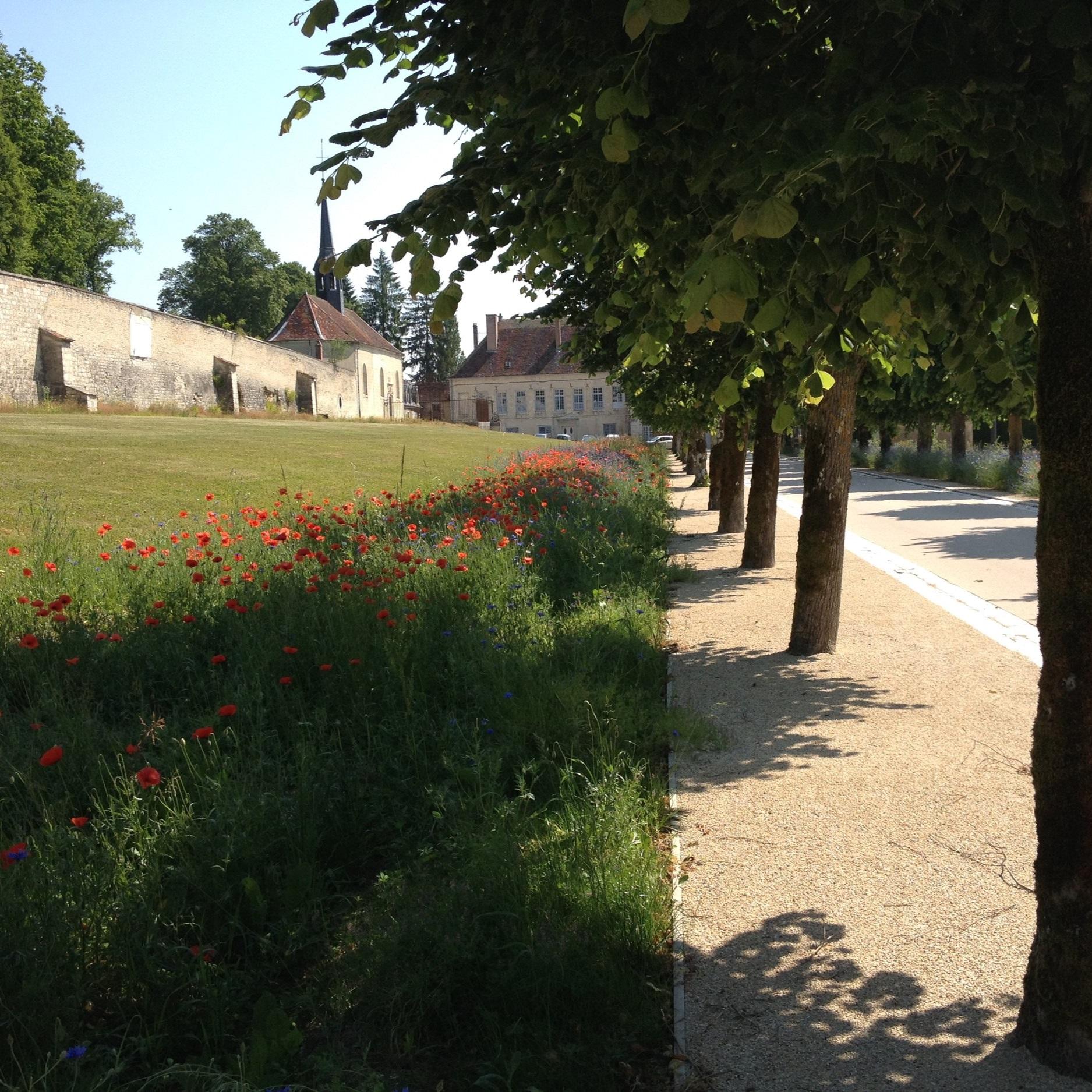 Ancienne Abbaye de Clairvaux - - CLAIRVAUX -Livré Mai 2015