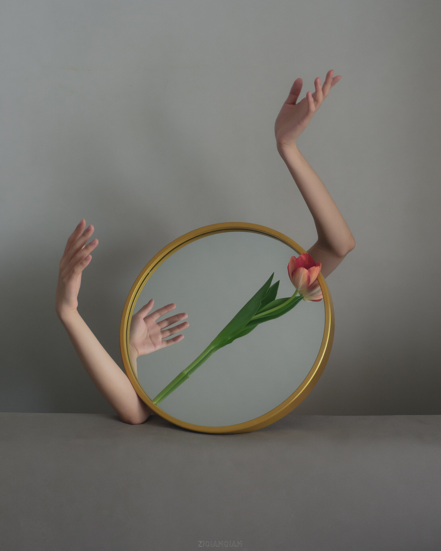 An art photograph where w a circular mirror has a tulip laying across it, and two arms come out of either side, with one hand reflected in the mirror. It looks slightly broken and mournful, but lovely.
