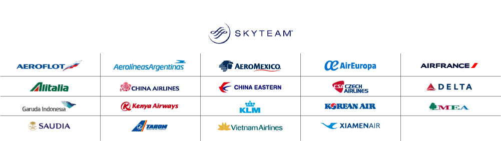 logos_AND_grid_skyteam.png