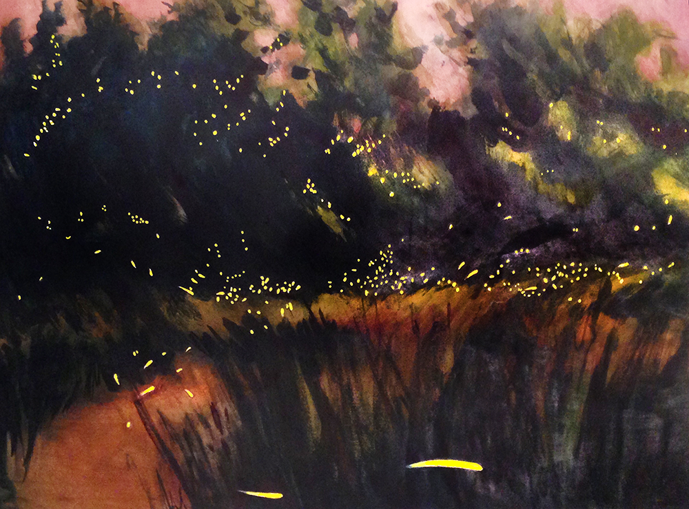 varna fireflies.png