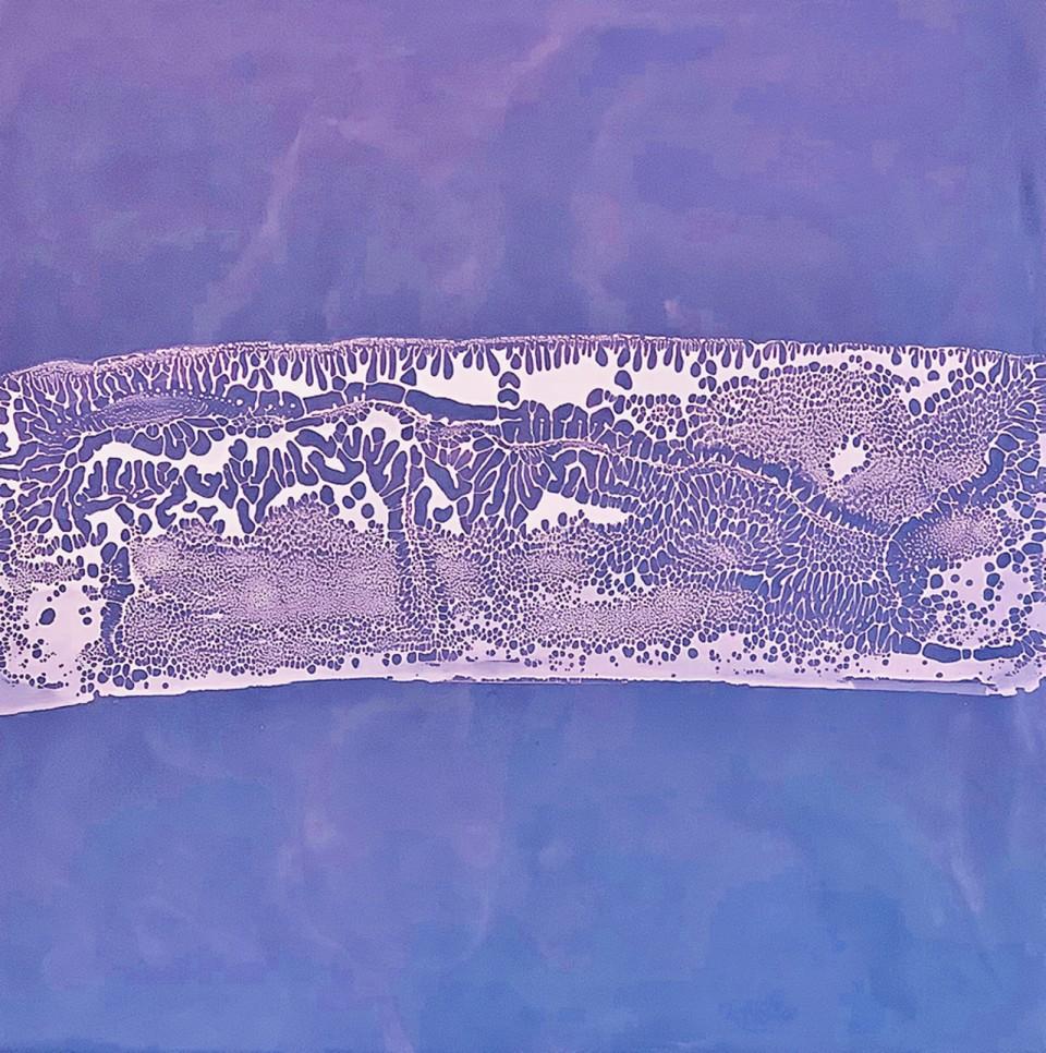 Fossil Sediment