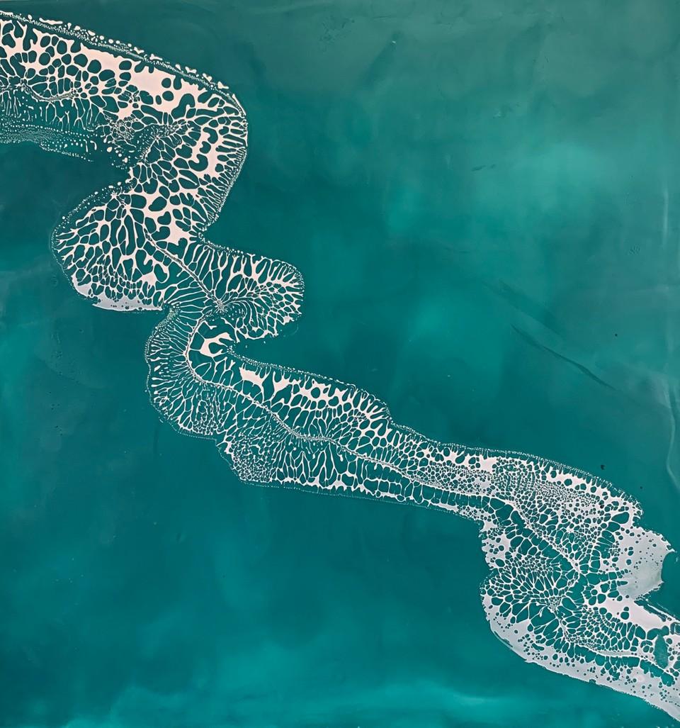 River Eel