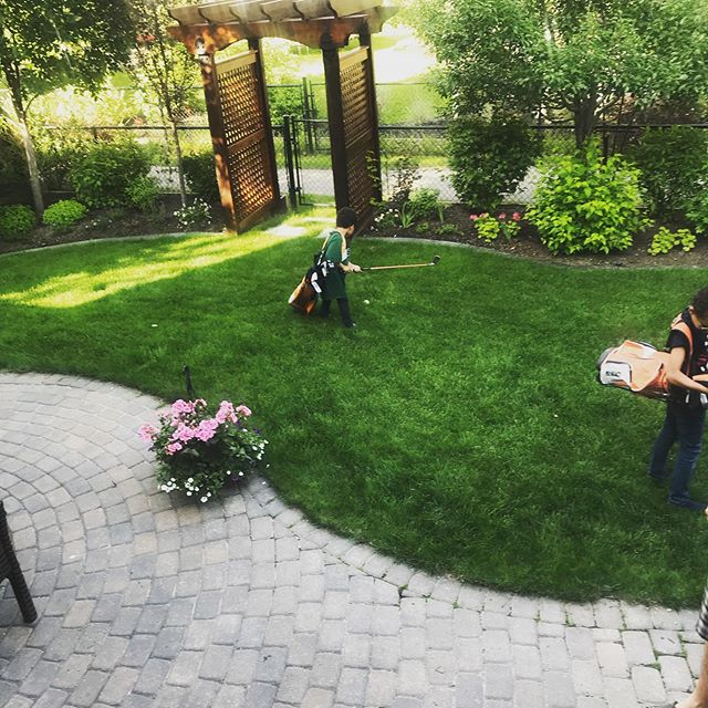 Backyard golf... what could go wrong? 🤷🏻‍♀️ 😐 🏌️ . . . #golfkids #kidsgolf #yycnow