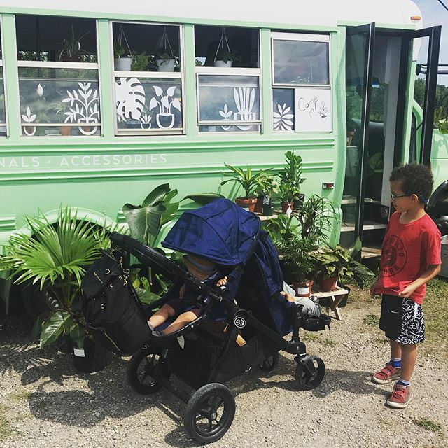 Took a trip up to the @bearspawlionsfarmersmkt today for the first time! The boys loved it. They were very excited to point out all the plants the knew on the plant bus @the_sunroom_plants. We got another snake plant to add to our collection! Fun day!