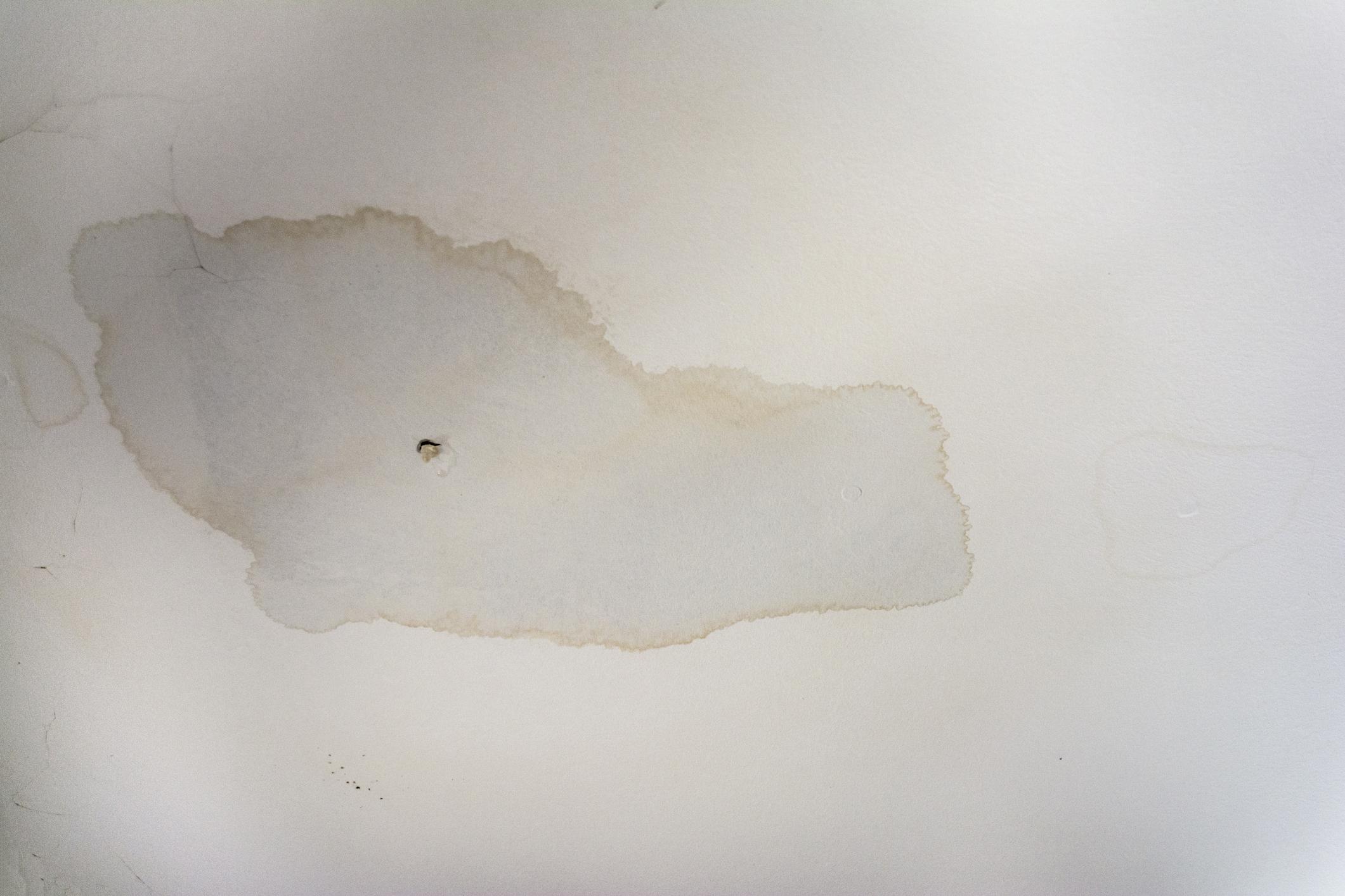 wet ceiling.jpg