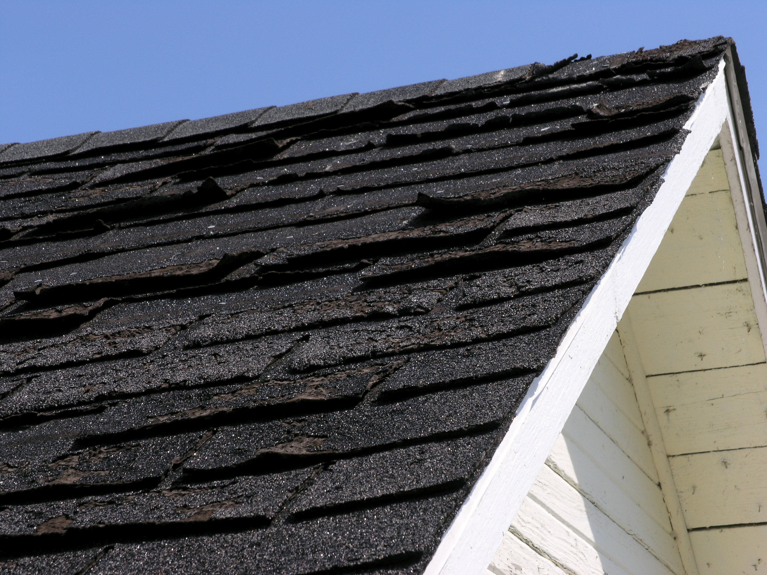 curled and warped roof shingles.jpg