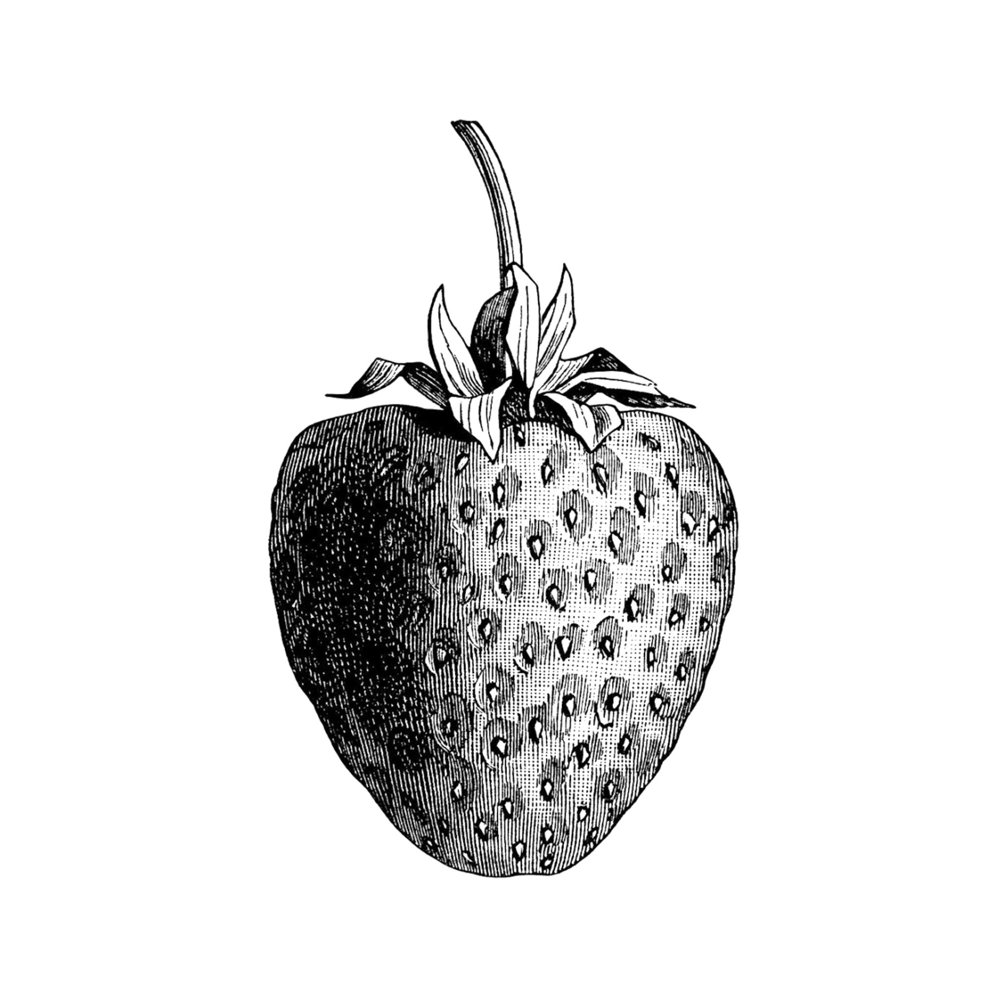 Produce & Fruit Basket -