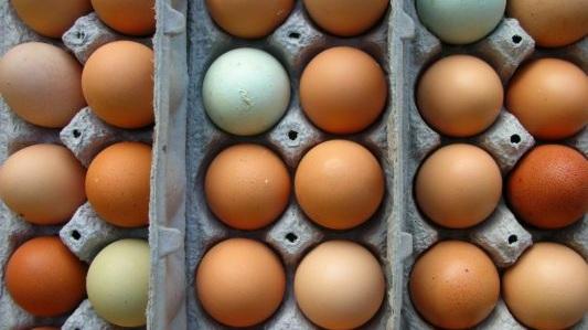 farm-fresh-eggs.jpg