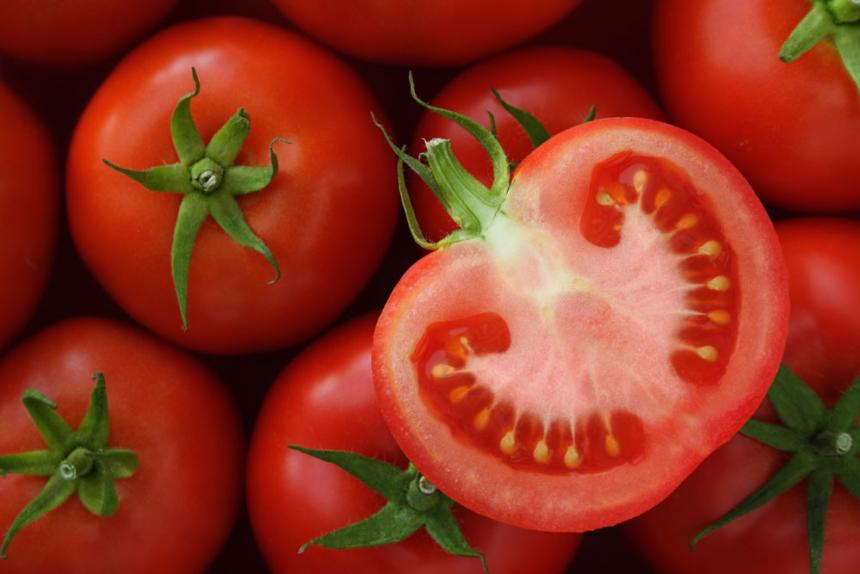 Tomato-header-860x574.jpg
