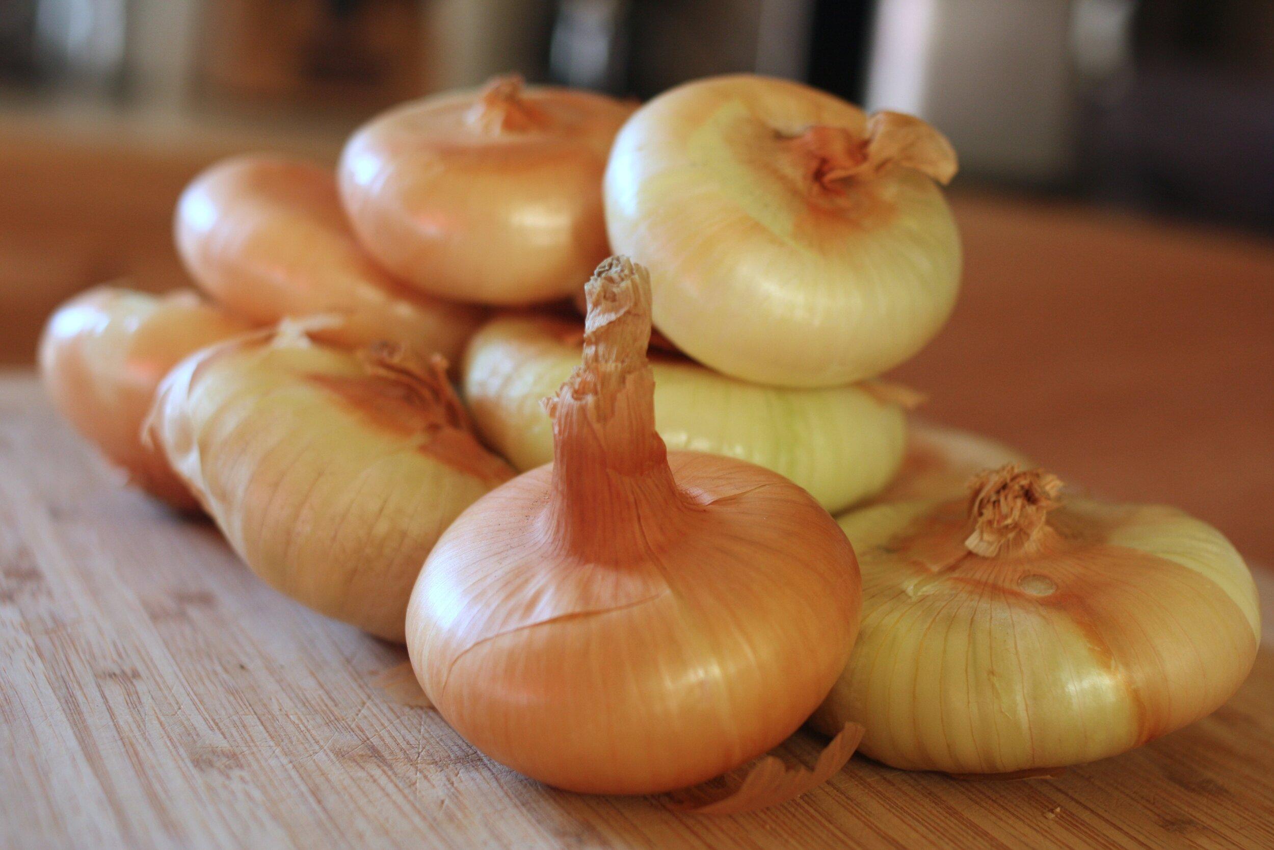 cippolini onions.jpg