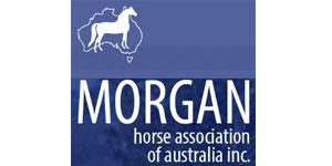 Morgan Horse Association of Australia