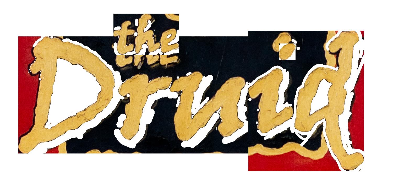 druid_logo.png
