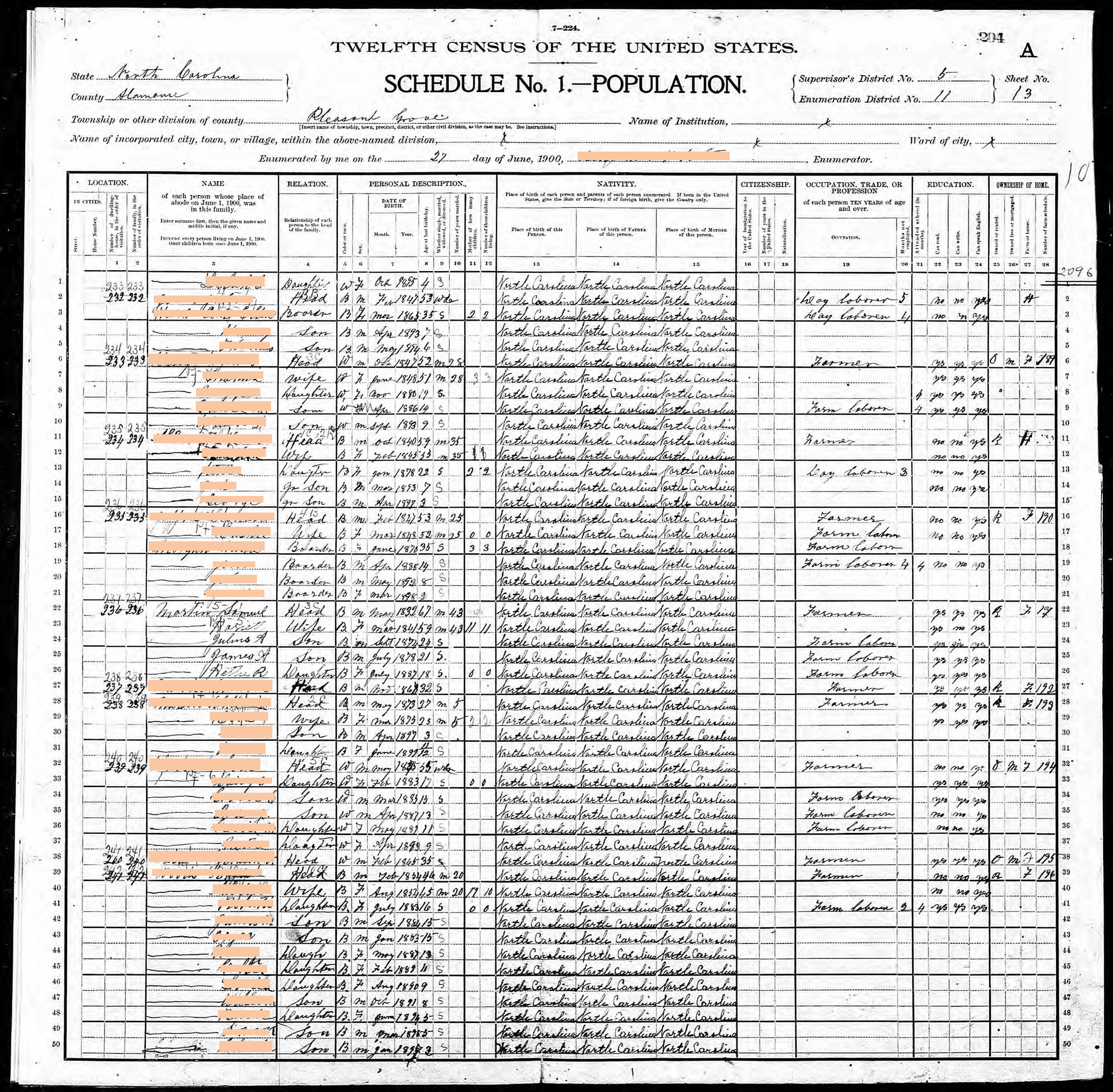 Generation 6:  After 43 years of marriage (1900)    Redacted 1900 census record featuring the family of Samuel F. Martin + Harriet Jeffries (4x great grandparents), html hex color codes sourced from photographs of my mother. Digital print, 24 x 24 in