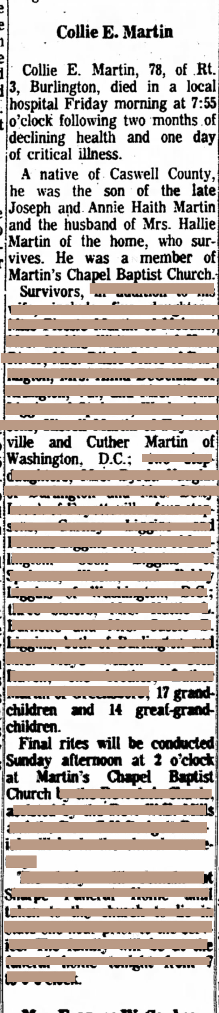 Generation 4:  My Mother is one of the 14 great-grandchildren (1971)    Redacted obituary of Collie Exodus Martin (2x great grandfather), html hex color codes sourced from photographs of my mother.  Digital Print  37 x 8 in