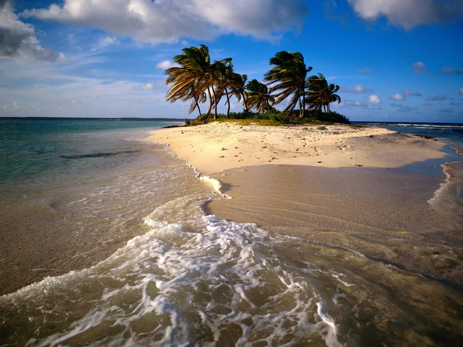 sandy_island_caribbean-normal