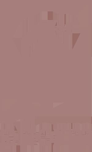 1st_phorm_logo copy.png