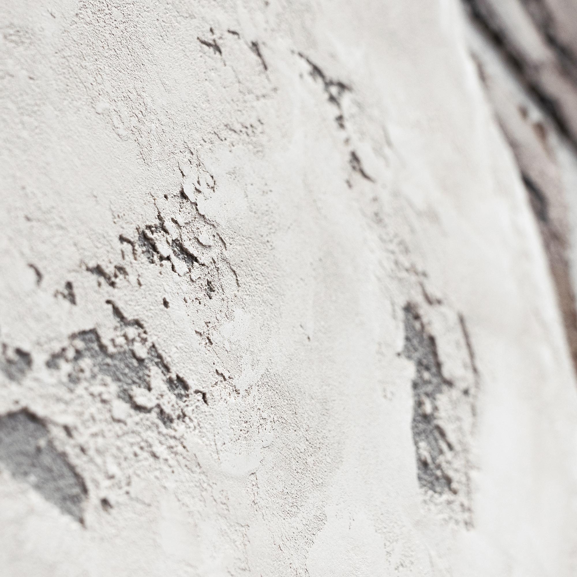 EF123 (Detail)