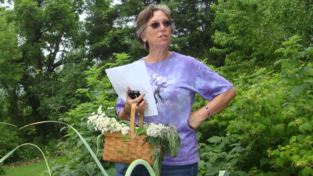 Sue J teaches students to choose and harvest herbs for compounding salve