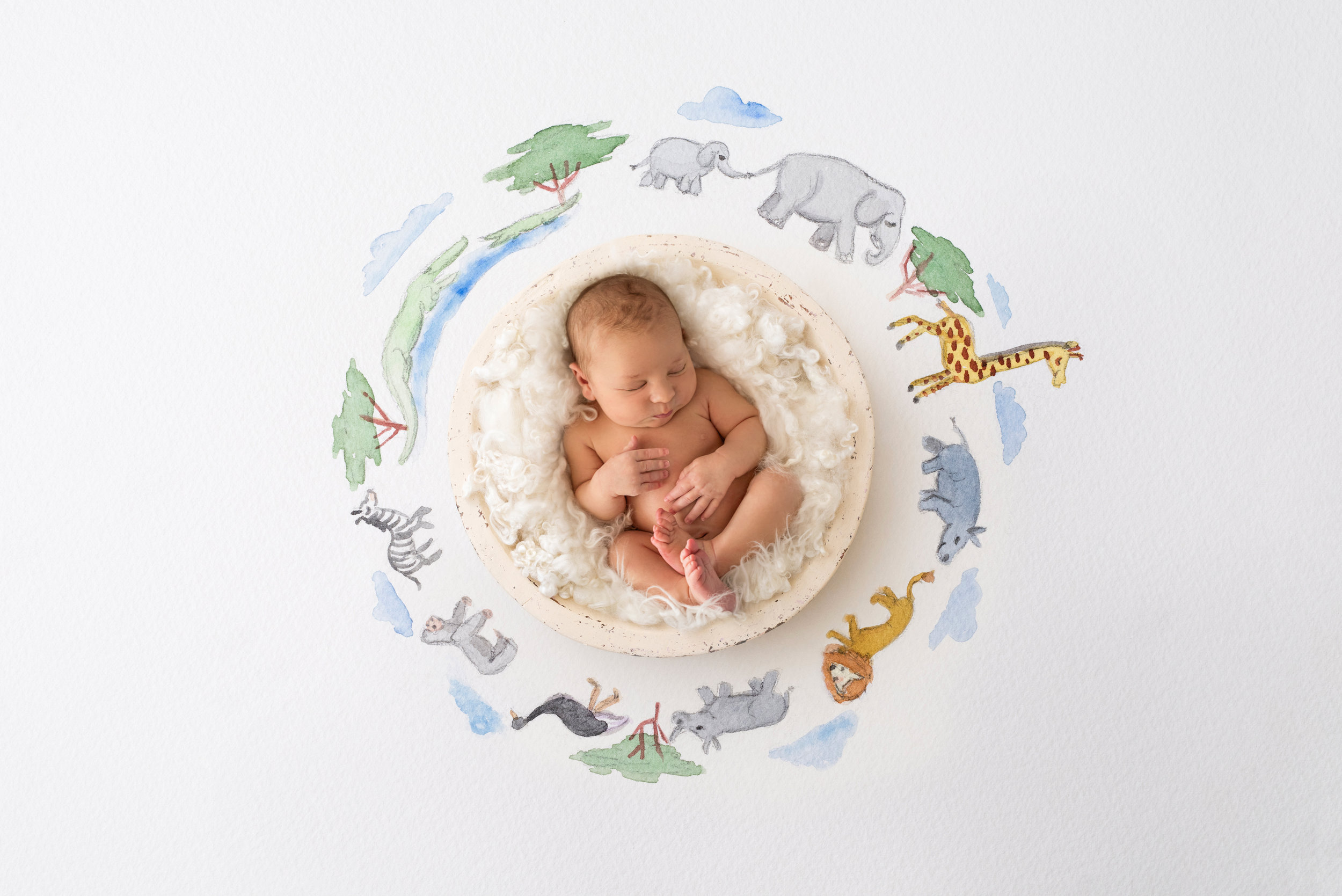 Shannon Revelle Photography, Michigan Newborn Photographer in Metro Detroit, Baby Art Studio Session Photos