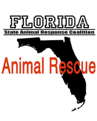 florida animal rescue.png