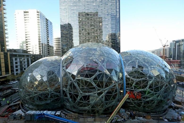 Amazon Bub.jpg