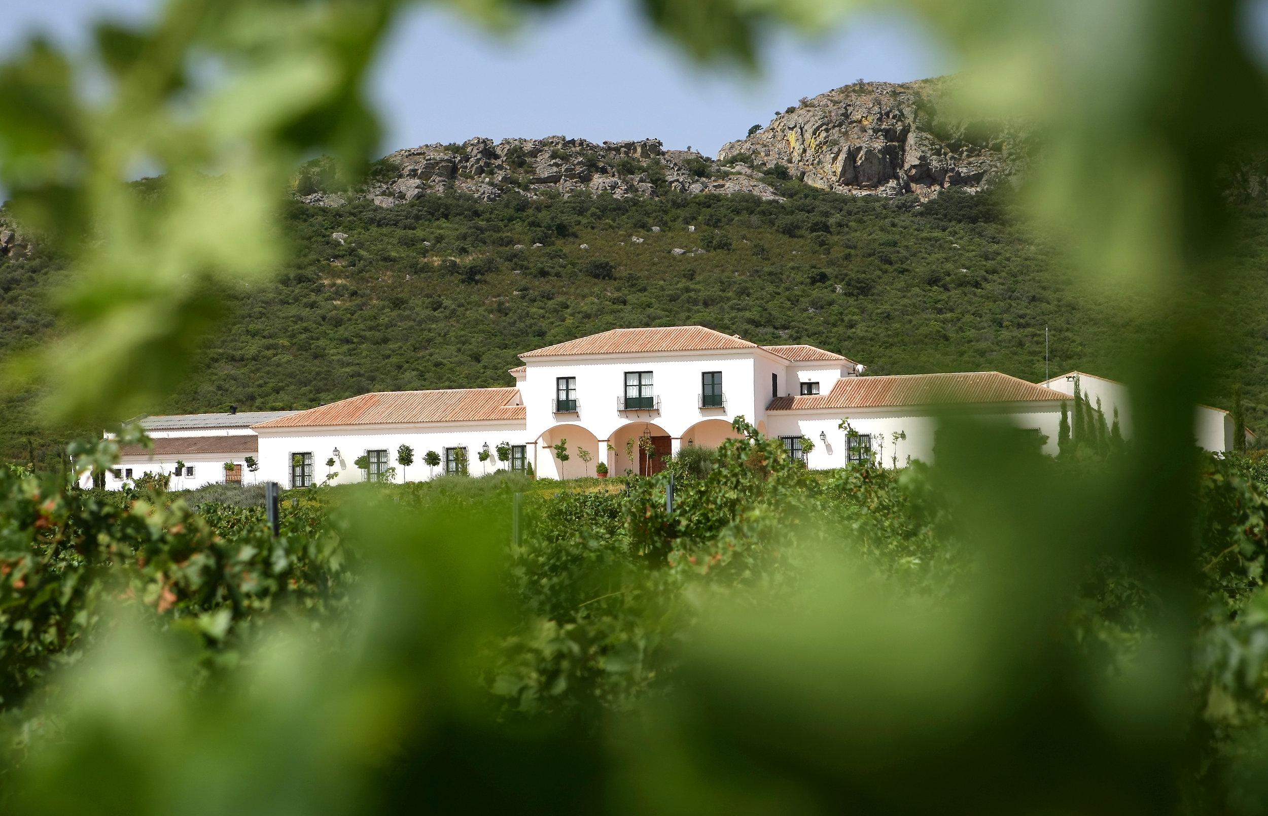 Viña Santa Marina Winery located in Mérida, in the South-West region of Spain.