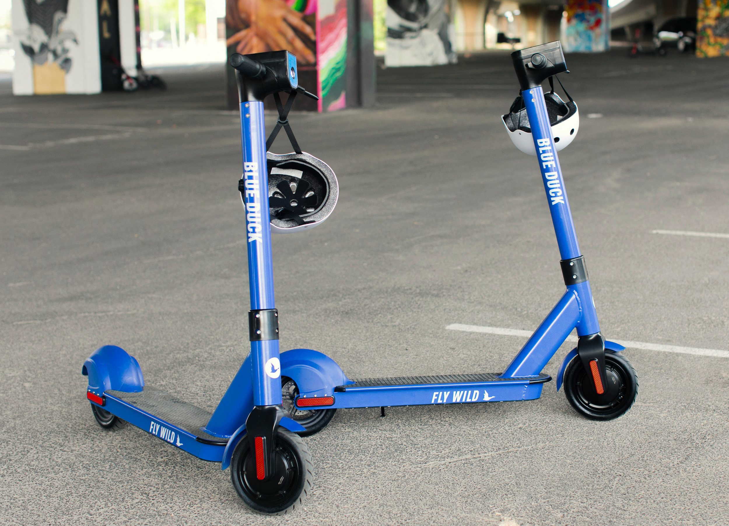 BlueDuckScootersSpring2019-1031.jpg