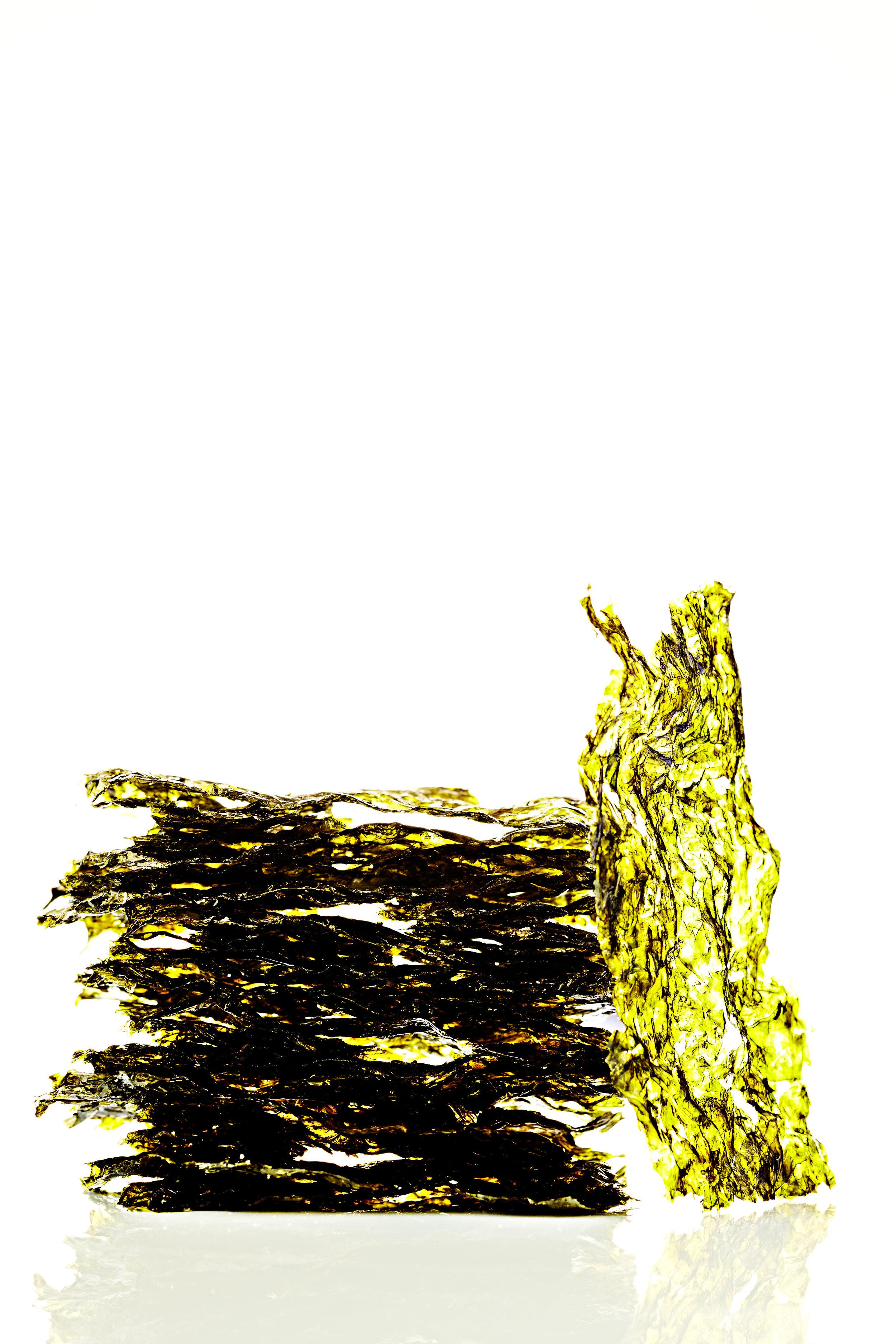 Roasted seaweed snacks  still-life on white