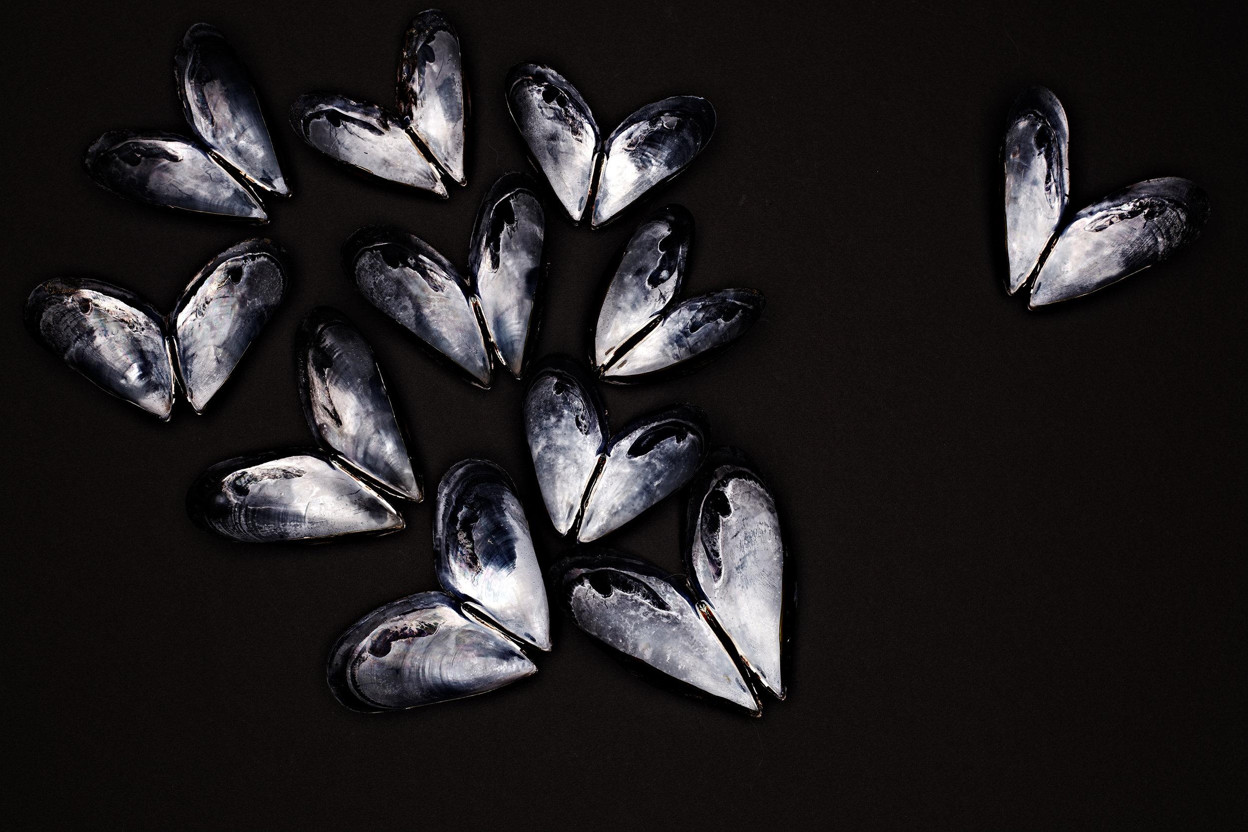 20120502_mussels_still-0050.jpg