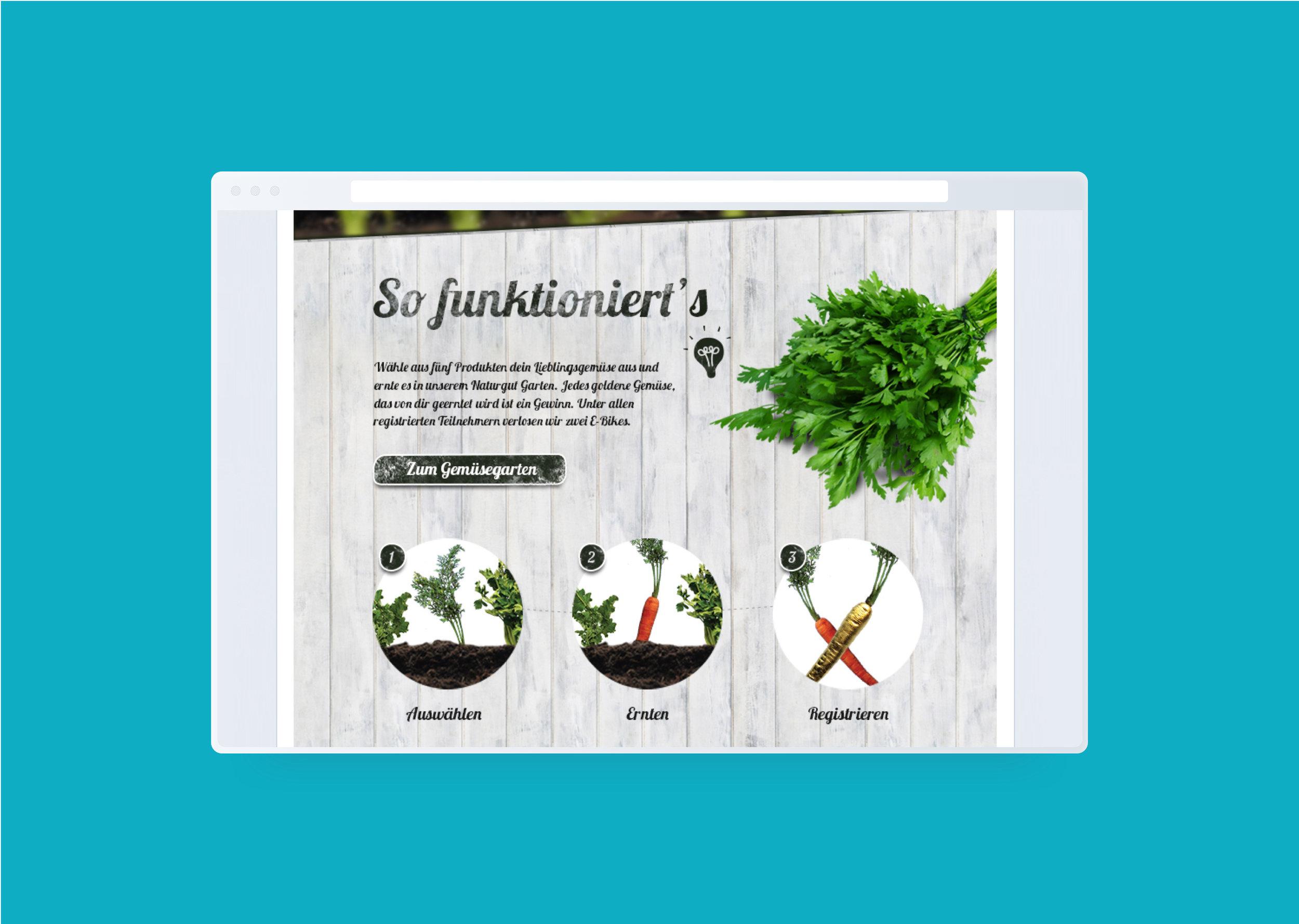 Browser-Mockup-Gemüssegarten_1.jpg
