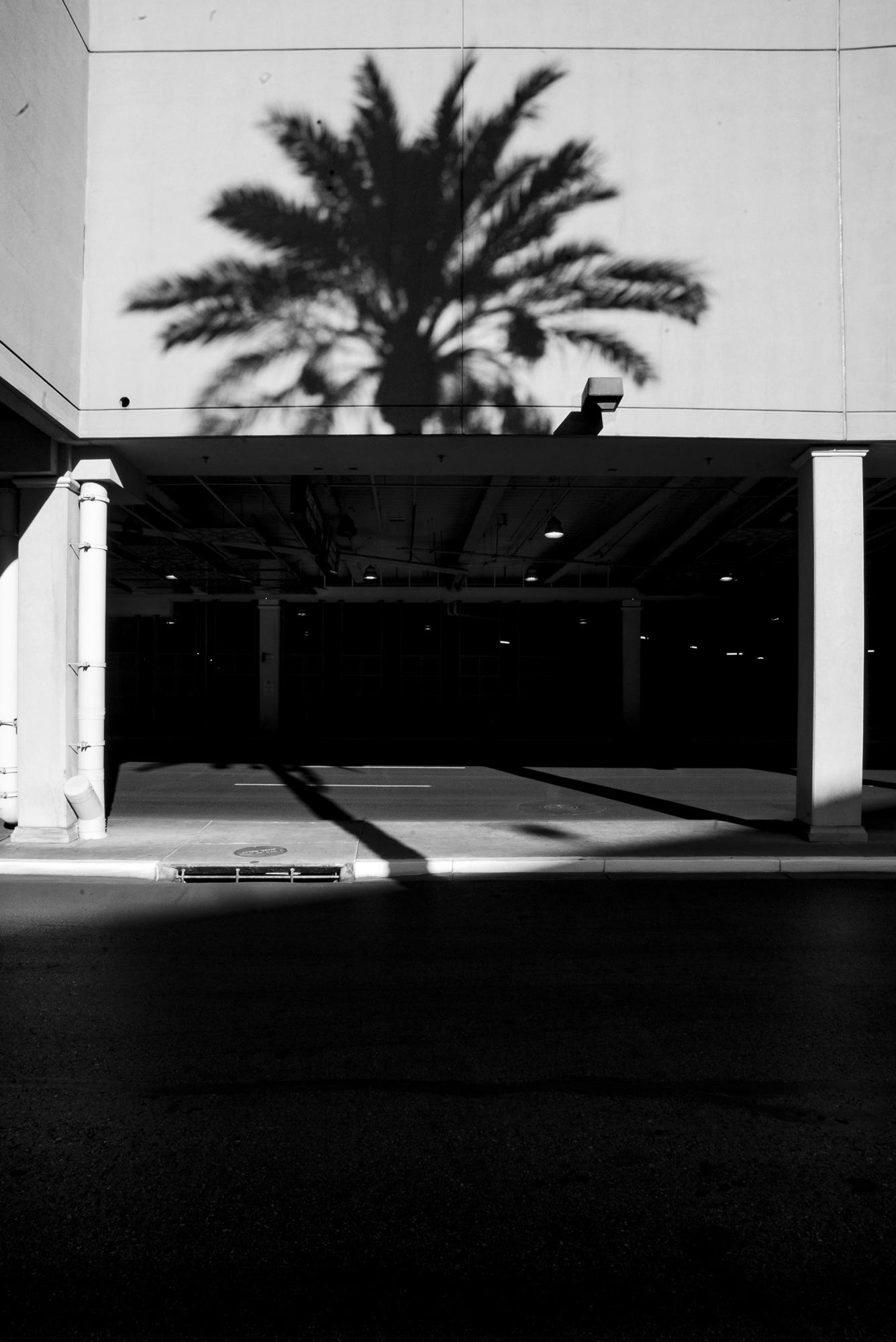 Las Vegas, Fall 2018