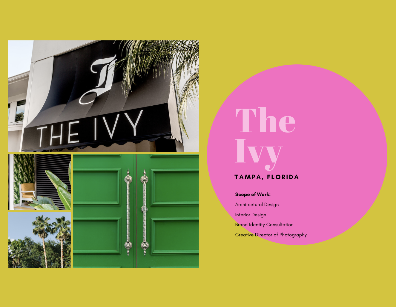 BRAND STORY: THE IVY