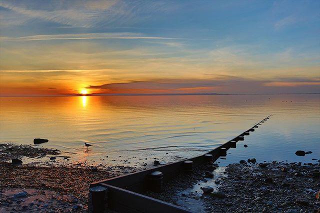 Sunset at Crescent Beach, British Columbia. Canon EOS 5D III, 16-35f2.8 L #crescentbeach #bc #beautifulbc #canada #beach #shore #coast #sunset #sunset_pics #whiterock #canon #canonphotography #canon_photos #planet_earth_shots #beachlife #coastline #travelphotography #wanderlust #travelbug