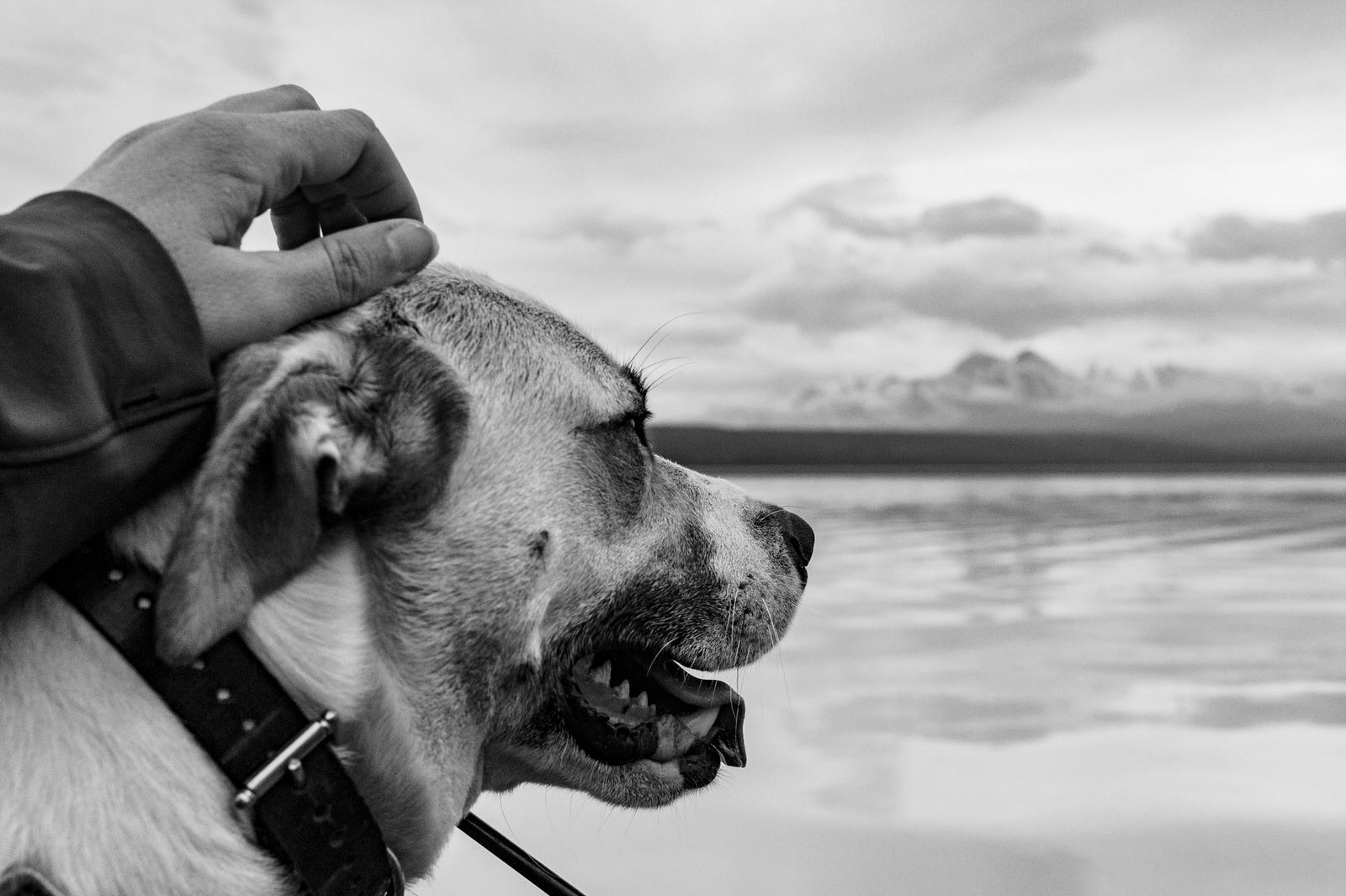 Beluga_lake_alaska_fly_out_fishing_trip (22).jpg