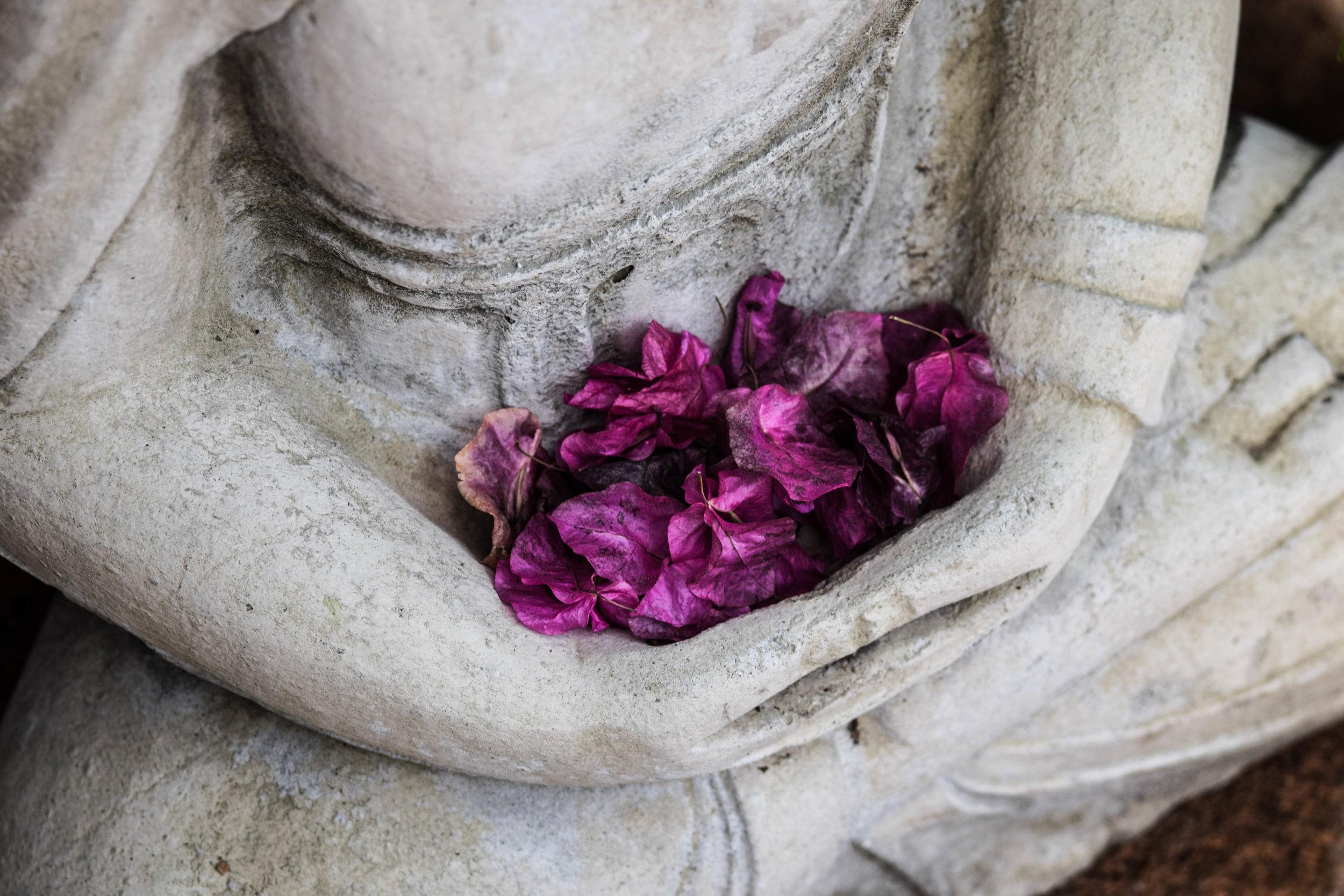 Ayurvedic Healing -