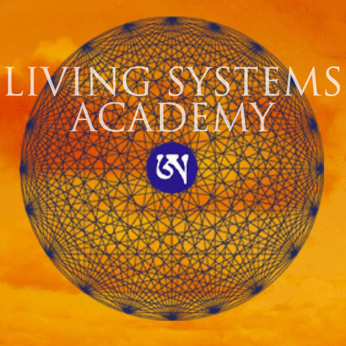 Living Systems Academy A nonprofit 501(c)(3), joint-venture with MatrixWorks - We are spreading love with the MATRIXWORKS™ Model to underserved communities and organizations!True sustainability begins with the human element. In the hopes of creating a world that works for all and spreading this transformational work to many, MatrixWorks has created this nonprofit entity, in order to house a school and help our community create happier, healthier, and thus more sustainable human environments.Within an educational program, we are training facilitators and educators to bring the MatrixWorks model into organizations at a subsidized rate.This fellowship model provides a chance for business, education, health care and therapy systems to be impacted and exposed to the work, while offering our students an opportunity to practice their new skills.