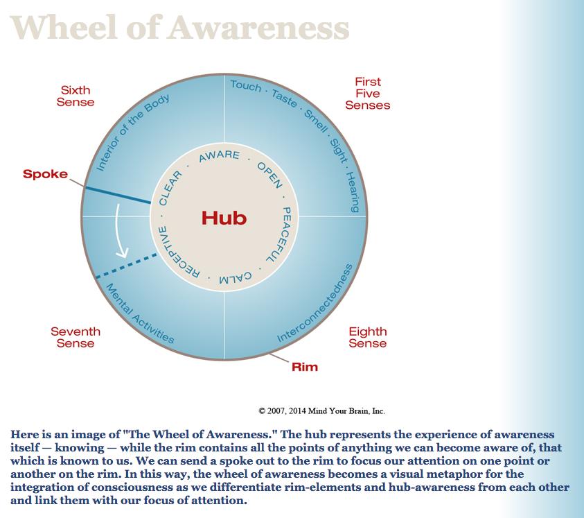 Wheel-of-Awareness.png