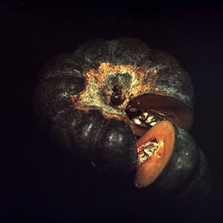 lowres-detail-of-cucurbita-maxima-vs-c-moschata-by-daniel-malva-artboom.jpg