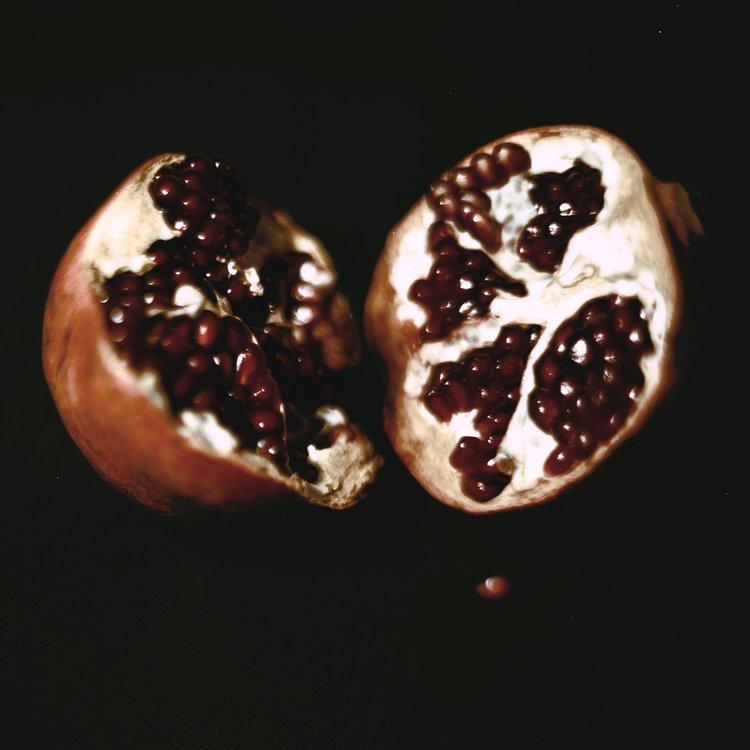 lowres-detail-of-punica-granatum-by-daniel-malva-artboom.jpg