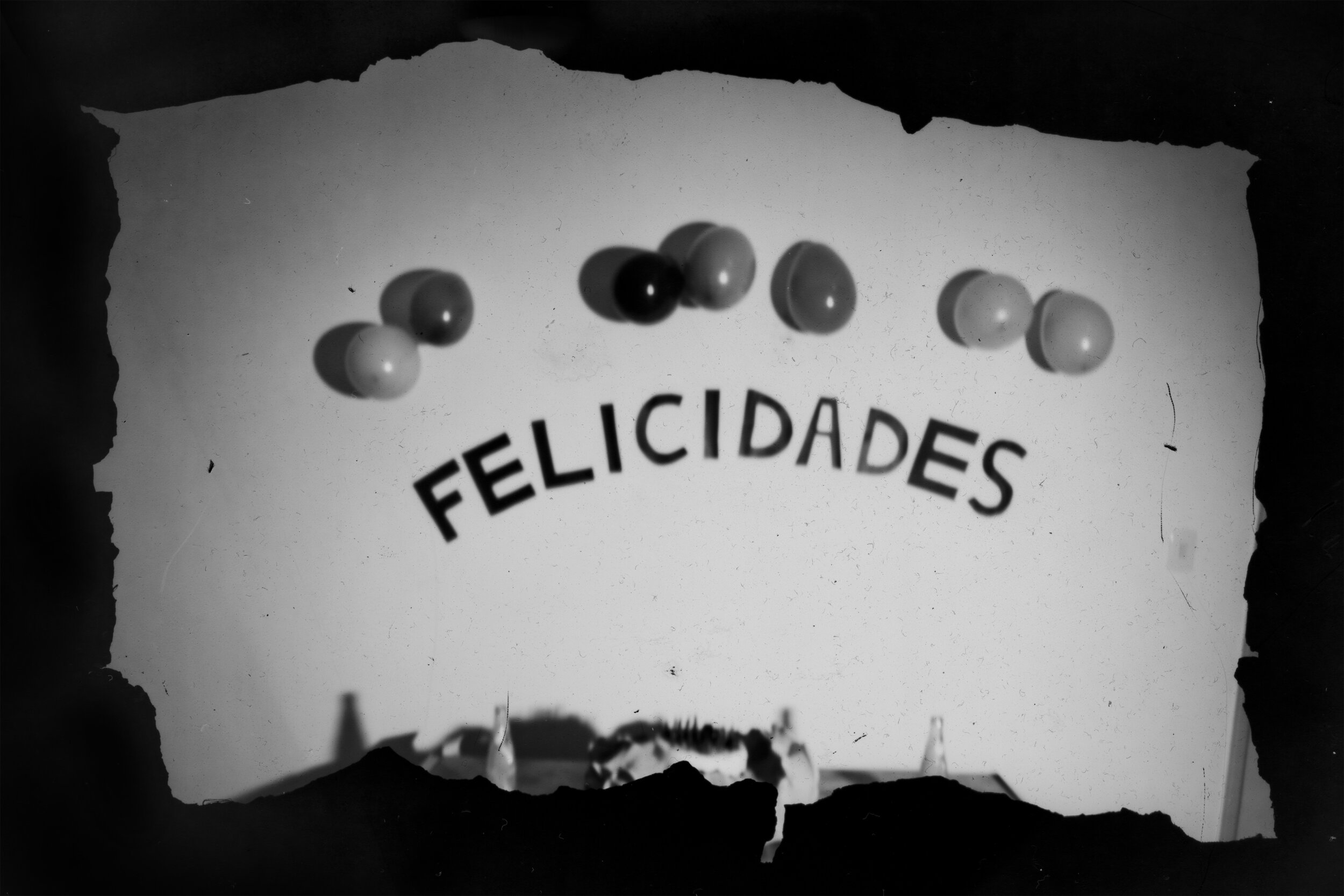 detail-of-felicidades-happiness-by-emidio-contente-from-artboom-low.jpg
